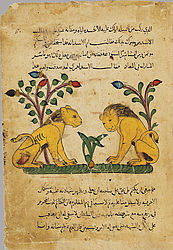 Manuscript of the Kalīla wa-Dimna. Egypt or Syria, 1310 – 1350 | © BSB/ Cod.arab. 616