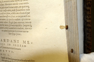 Early modern-era bookmarks | © BSB