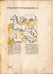 Yitsḥaḳ Ben Shelomoh Ibn-Abi-Suhula: Hebrew fable collection. Germany around 1450 | © BSB/ Cod.hebr. 107