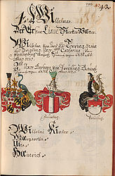 Genealogy and heraldry: Coloured illustration of the coat of arms of Wilhelmus von Törring, from the genealogy of the Bavarian nobility by Johann Michael Wilhelm von Prey | © BSB/ Cgm 2290(27
